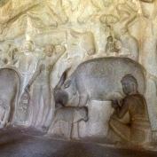 L'histoire de Krishna dans son petit village de bouviers