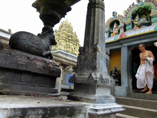 Kanchipuram - Ekambareshvara Temple